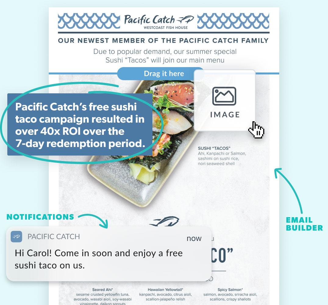 Pacific Catch hero