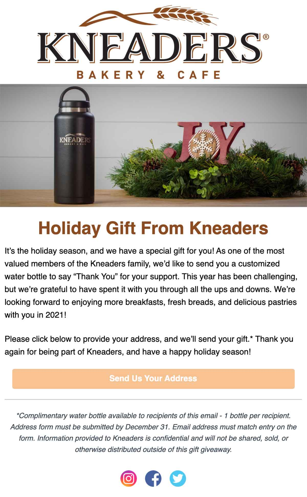 Kneaders Holiday Gift email