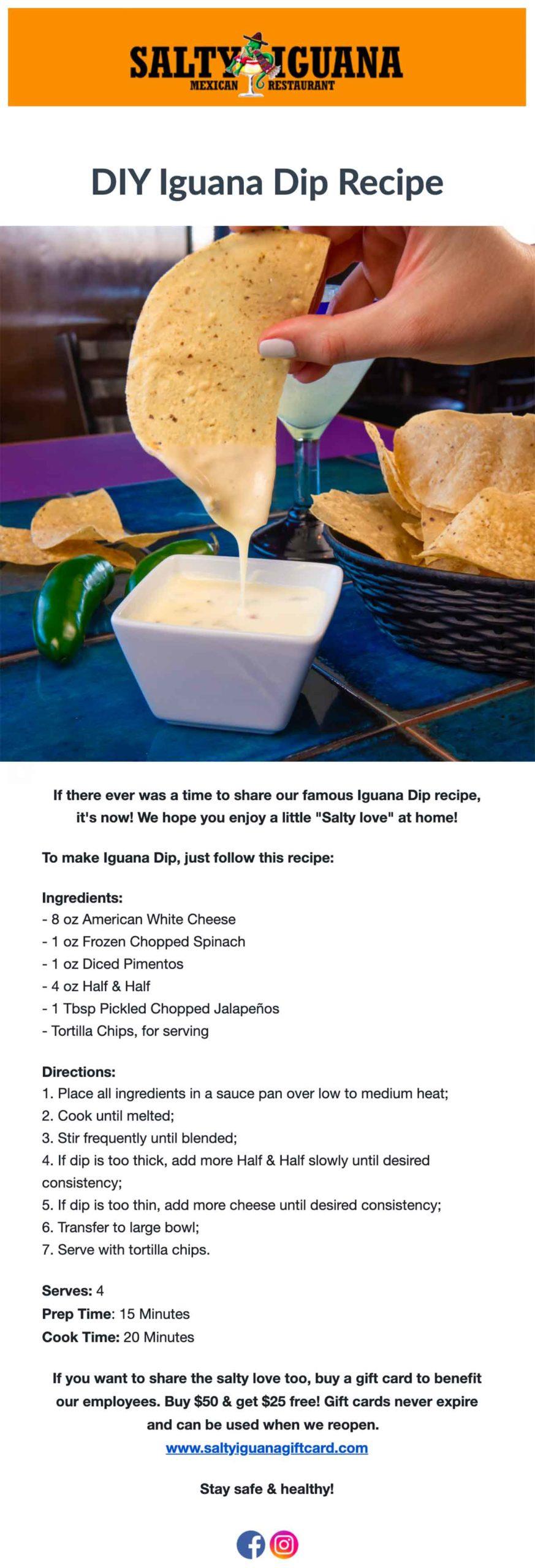 Salty Iguana: DIY Iguana Dip Recipe email