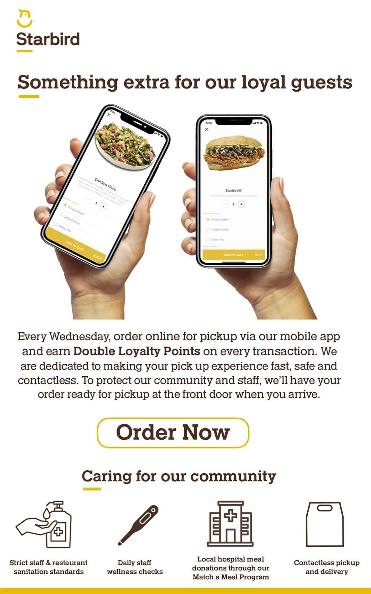Starbird: Double Loyalty Points Today email