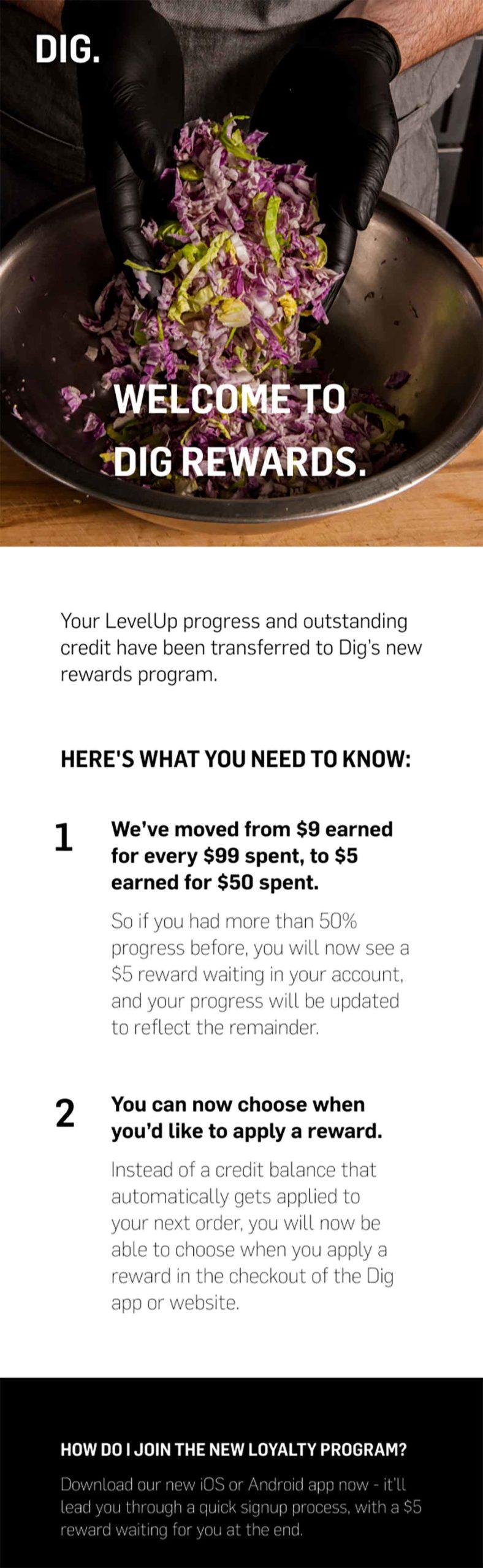 DIG transitional loyalty program email